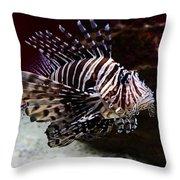 Devil Firefish Throw Pillow by Aidan Moran