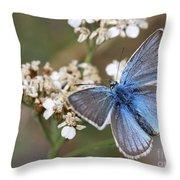 Eastern Baton Blue  Throw Pillow by Amos Dor