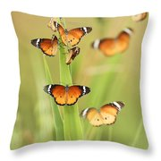 Flock Of Plain Tiger Danaus Chrysippus Throw Pillow by Alon Meir