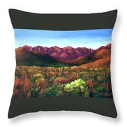 Gods Palette Throw Pillow by Anthony Falbo