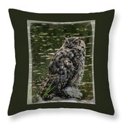 Great Horned Owl Throw Pillow by Ernie Echols