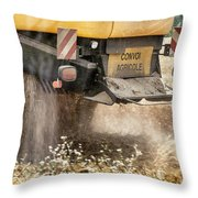 Harvest Time  Throw Pillow by Georgia Fowler