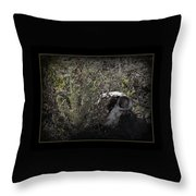I See You Throw Pillow by Ernie Echols