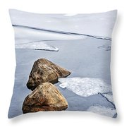 Icy Shore In Winter Throw Pillow by Elena Elisseeva