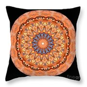 Kaleidoscope Anatomical Illustrations Seriesi Throw Pillow by Amy Cicconi