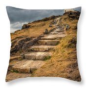 Lighthouse Steps Throw Pillow by Adrian Evans