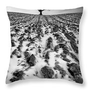 Lone Tree Throw Pillow by John Farnan