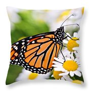 Monarch Butterfly Throw Pillow by Elena Elisseeva