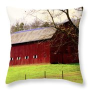 OLD RED Throw Pillow by KAREN WILES