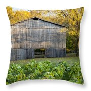 Old Tobacco Barn Throw Pillow by Brian Jannsen