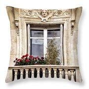 Old Window Throw Pillow by Elena Elisseeva
