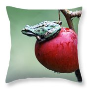 Pacific Tree Frog On A Crab Apple Throw Pillow by David Nunuk