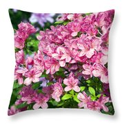 Pink And Blue Rhododendron Throw Pillow by Frank Tschakert