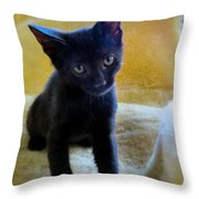 Posing  Throw Pillow by Michelle Milano