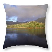 Rainbow Throw Pillow by Art Wolfe