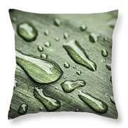 Raindrops On Leaf Throw Pillow by Elena Elisseeva