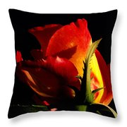 Rising Rose Throw Pillow by Camille Lopez
