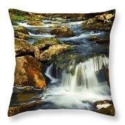 River Rapids Throw Pillow by Elena Elisseeva