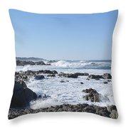 Sea Foam Throw Pillow by Barbara Snyder