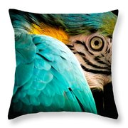 Sleeping Beauty Throw Pillow by Karen Wiles