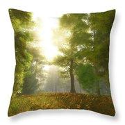 Sunlit Meadow Throw Pillow by Cynthia Decker