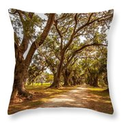 The Lane Throw Pillow by Steve Harrington