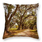 The Lane Throw Pillow by Steve Harrington