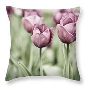 Tulip Garden Throw Pillow by Frank Tschakert