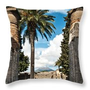 Vesuvius Throw Pillow by Marion Galt