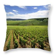 Vineyard Of Cotes De Beaune. Cote D'or. Burgundy. France. Europe Throw Pillow by Bernard Jaubert