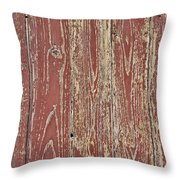 Weathered And Worn Throw Pillow by Georgia Fowler