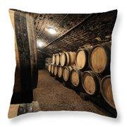 Wine barrels in a cellar. Cote d'Or. Burgundy. France. Europe Throw Pillow by BERNARD JAUBERT