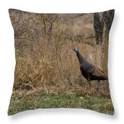 Eastern Wild Turkey Throw Pillow by Linda Freshwaters Arndt