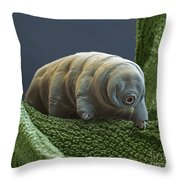 Water Bear Throw Pillow by Eye of Science and Science Source