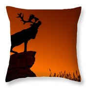 130918p141 Throw Pillow by Arterra Picture Library