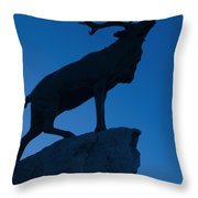 130918p144 Throw Pillow by Arterra Picture Library