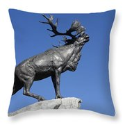 130918p149 Throw Pillow by Arterra Picture Library