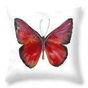 16 Mesene Rubella Butterfly Throw Pillow by Amy Kirkpatrick