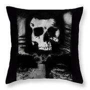 1865 Throw Pillow by Michael Kulick