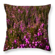 August Field Throw Pillow by Svetlana Sewell