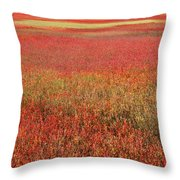 Autumn Blueberry Field Maine Throw Pillow by Scott Leslie