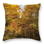 Autumn Drive Throw Pillow by Andrew Soundarajan