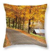 Autumn Road Throw Pillow by Brian Jannsen