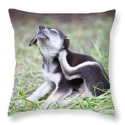 Cute Puppies Throw Pillow by Jannis Werner