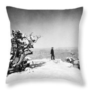 Grand Canyon: Sightseer Throw Pillow by Granger
