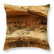 Horse Collar Ruins Throw Pillow by Jeff Swan