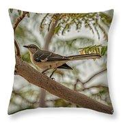 Mockingbird Throw Pillow by Robert Bales