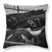 Numbered Throw Pillow by Amber Kresge