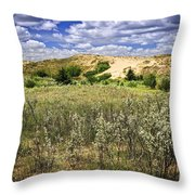 Sand dunes in Manitoba Throw Pillow by Elena Elisseeva
