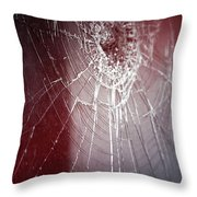 Shattered Dreams Throw Pillow by Trish Mistric